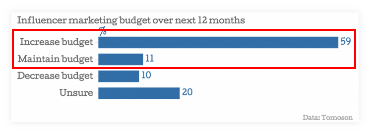 Influencer Marketing Budget - 12 Months